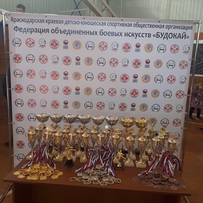 киокушинкай в Раевской