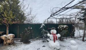 раевская-зимой